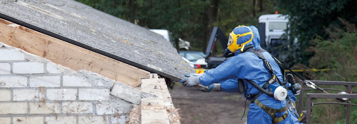 Asbest Beseitigung